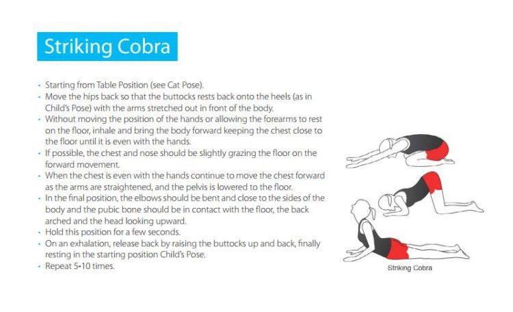 shapeshifter yoga pose manual
