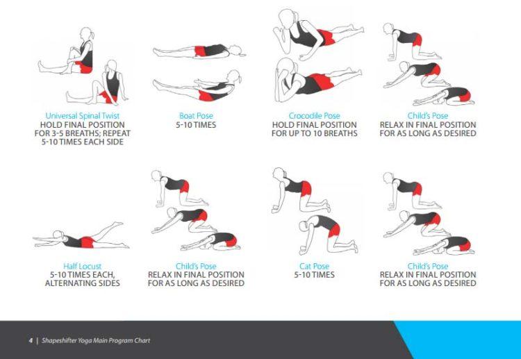 shapeshifter yoga wall chart